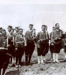 Konavoska Vojska